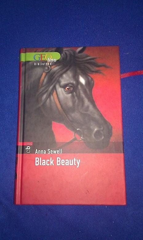 Bild von Black Beauty