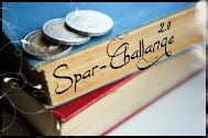 sparchallange2_roh
